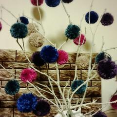 ポンポン/小枝/クリスマス2019/リミアの冬暮らし/ダイソー/雑貨/... 寒空の信州スカイパークにて小枝を1人拾い…