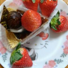 ル・フルティエ/あけおめ/フォロー大歓迎/冬/おうち/年末年始/... ケーキ買ってしまいました!でも美味しくい…