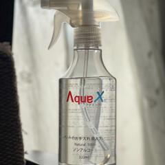 AquaX ペットのお手入れスプレー    AquaX(アクアエックス)(その他ペット用品、生き物)を使ったクチコミ「散歩から帰って、足はシャワーで洗えるけど…」(1枚目)