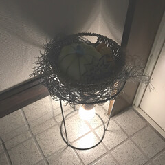ダイソー/セリア/足元灯/照明/いなざうるすや/DIY/... ダイソーの植木鉢ホルダー⁈にセリアのペン…