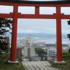 函館護国神社/御朱印集め/おでかけ/旅行/風景 (2枚目)