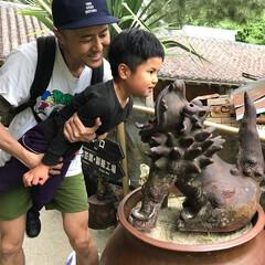 シーサー/わたしのGW 沖縄の琉球村。シーサーに噛まれていいこと…
