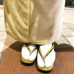 あけおめ 新年らしいゴールドの着物と草履で、挨拶ま…