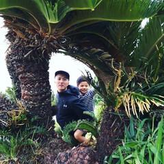 はいチーズ/わたしのGW 沖縄の万座毛。沖縄らしい植物素敵!その輪…