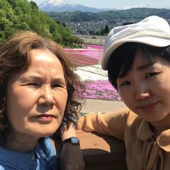 芝桜/おでかけワンショット 母の日にお花好きな母のために芝桜を見に行…