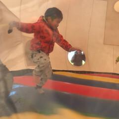 ふわふわドーム/おでかけワンショット ふわふわドームで元気よく、飛び跳ねました…