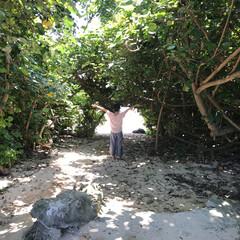 緑のトンネル/わたしのGW 沖縄の百名ビーチにぬける緑色のトンネル!…