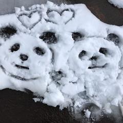 雪のお絵描き/冬 雪のお絵描きして、パンダを描いてみました…