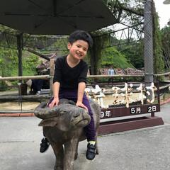 琉球村/わたしのGW 沖縄の琉球村。水牛に乗ってはいチーズ!