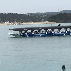 グラスボート/わたしのGW 沖縄のブセナ海中公園で乗ったグラスボート…