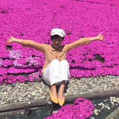 芝桜/おでかけワンショット 芝桜。真っピンクの桜と一緒で気持ちいい!!