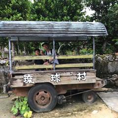 琉球村/わたしのGW 沖縄の琉球村。昔水牛が引いてた牛車。乗っ…