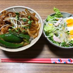 焼肉丼/わたしのごはん 焼き肉丼!野菜ものっけて一緒に食べるとご…(1枚目)