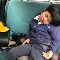 新一年生/平成最後の一枚 新一年生。僕だって疲れるんだーって言わん…
