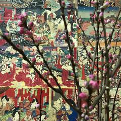 梅/小さい春 絵紙と小千谷のひいな祭りでのひとコマ。小…