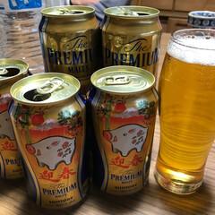あけおめ 今年の干支のイノシシ入りのビールで昼間か…