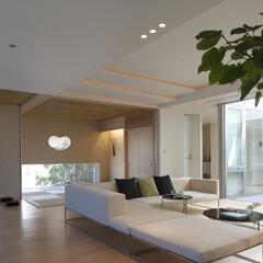 高級邸宅/高級住宅/デザイン住宅/豪邸/和室/注文住宅/... モダンな和室と一体化したリビング