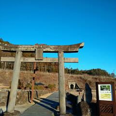ドライブ大好き/清水/わさび/トンネル/神社/おでかけ/... 鳥居の向こうにはトンネルが?! 興味津々…