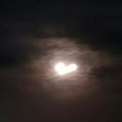 夜のお散歩/夜景/月/雨季ウキフォト投稿キャンペーン/令和の一枚/フォロー大歓迎/... ストロベリームーン+1日🌃✨ 手ぶれで、…
