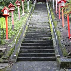 カラス/県境/神社/朱色/おでかけ/フォロー大歓迎 朱色と言われればやっぱり神社だなぁ⛩️ …(2枚目)