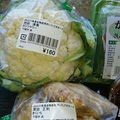 カリフラワー/にゃんこ同好会/ケロちゃん/菊芋/住まい/暮らし 地元のJA直売所いただきまーとで産直野菜…