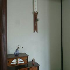 ケロちゃん/親バカ同盟/にゃんこ同好会/奈良旅行/短冊/床の間 私の部屋の床の間  竹の短冊掛けに母の書…