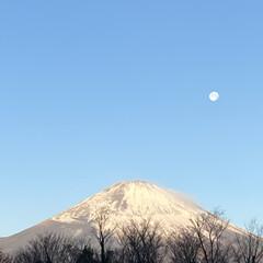月/景色/富士山/新年 あけましておめでとうございます。 今年も…(1枚目)