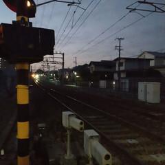 競馬場/朝マック/阪急電車/ウォーキング 今朝は南の方へウォーキング🚶 以前、映画…