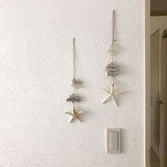 オーナメント/ヒトデ/流木/簡単DIY/100均/生活雑貨/... 100均の流木と、家にあった貝とかヒトデ…