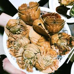 タビエビ/あけおめ/冬/おうち/おうちごはん 地元名物 タビエビ! 味は伊勢海老に似て…(1枚目)