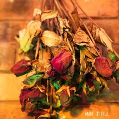 レンガ/薔薇/ドライフラワーアレンジ/ドライフラワーのある暮らし/ドライフラワー/雨季ウキフォト投稿キャンペーン/... 薔薇🌹