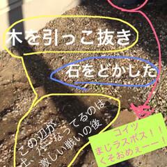 IRIS 超固まる防草砂15Kg 品番:C15-BR | アイリスオーヤマ(砂、砂利)を使ったクチコミ「中古物件なのです。 まだまだ改造途中。が…」(3枚目)