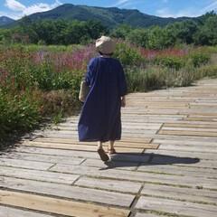 夏の思い出/2018/おでかけ/旅行/風景/ファッション/... 夏の思い出part3🌞 様々な草花が咲い…