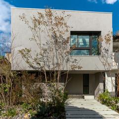 外観/外観デザイン/植栽計画/駐車スペース/リシン吹付/害平/... 玄関を入ると、広々とした土間。 モルタル…