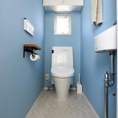 トイレ/インテリア/トイレインテリア/おしゃれ/かわいい/爽やか/... 先ほどとはうって変わって壁、天井を水色に…