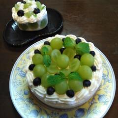 グルメ/フード/スイーツ/手作りお菓子/手作りケーキ/ケーキ/... 緑ぶどうのレアーチーズケーキを、作りまし…