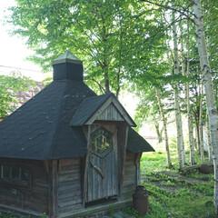 物置/風景写真/風景/ガーデン/庭 今日は朝から天気が良かったですね。 中は…