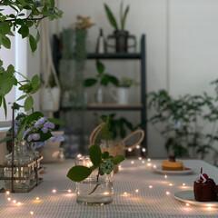 観葉植物のある暮らし/無花果のケーキ/雨季ウキフォト投稿キャンペーン/おやつタイム/雑貨/暮らし/... 降ったりやんだりの1日。  こんな日は …(1枚目)