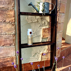 エクステリアカラー ダークブラウン  水性着色剤 ウッドアトリエ | 和信ペイント(Washi Paint)(ニス、ステイン)を使ったクチコミ「和信ペイント株式会社さんの無料モニターに…」(1枚目)