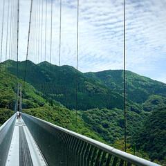 おでかけ/観光地/観光スポット/梅雨時期の晴れ間/アラフォー主婦/自然/... 【綾の照葉大吊橋】 ・高さ   142m…(2枚目)