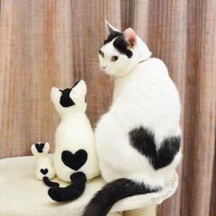 お気に入り/手作り/ハンドメイド/ニードルフェルト/ミニチュア/三姉妹 愛猫いくらちゃんのミニチュア♪ ニードル…