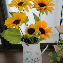 いいね!賞/ひまわり/雨季ウキフォト投稿キャンペーン/フォロー大歓迎/LIMIAファンクラブ/至福のひととき/... 庭の紫陽花も終わってしまったので昨日ダイ…