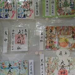 中華/桂花楼/嵐/雨季ウキフォト投稿キャンペーン/フォロー大歓迎/至福のひととき/... お店の名前でわかる方は嵐ファンでしょうか…(4枚目)