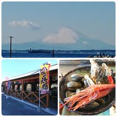 まるはま/浜焼き/食べ放題/富士山/ドライブ 真冬の気温に逆戻りの千葉から見えた富士山…(1枚目)