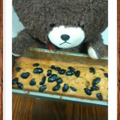パウンドケーキ/黒豆納豆砂糖ついてない/きな粉/ジャッキー君クラブ/フォロー大歓迎/ハンドメイド/... これぼくんのだーてっいって放してくれませ…