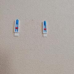 テサ パワーストリップ 高さ調節キャンバスフック   テサ  (ウォールフック)を使ったクチコミ「テサパワーストリップ高さ調節キャンバスフ…」(6枚目)