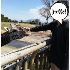 春休み/平川動物公園/LIMIAペット同好会/フォロー大歓迎/ペット/ペット仲間募集/... 春休みで帰省してる兄ちゃんと平川動物公園…