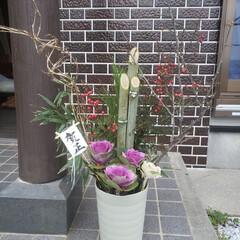 門松/お正月2020/ダイソー/100均/DIY/暮らし 門松を100均の植木鉢で作ってみました。…