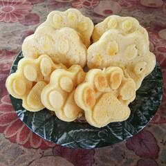 1型糖尿病/糖質制限/糖質オフ/ホットケーキ/大豆粉/低糖質スイーツ/... 可愛い肉球🐾型を使って、大豆粉ホットケー…
