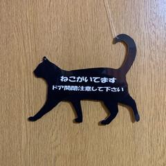 猫/ねこ/ねこ雑貨/猫雑貨 関西バージョン